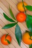 Tangerines με τους πράσινους κλάδους στο κίτρινο υπόβαθρο Στοκ φωτογραφία με δικαίωμα ελεύθερης χρήσης