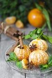 Tangerines με το γλυκάνισο και τη μέντα Στοκ φωτογραφία με δικαίωμα ελεύθερης χρήσης