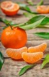 Tangerines πορτοκάλια, κλημεντίνες, εσπεριδοειδή με τα πράσινα φύλλα στοκ φωτογραφία με δικαίωμα ελεύθερης χρήσης