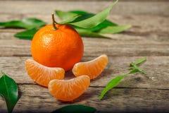 Tangerines πορτοκάλια, κλημεντίνες, εσπεριδοειδή με τα πράσινα φύλλα στοκ φωτογραφίες με δικαίωμα ελεύθερης χρήσης