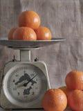 Tangerines στις κλίμακες Στοκ Εικόνες