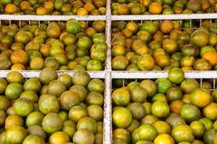 Tangerines στο κατάστημα Στοκ φωτογραφίες με δικαίωμα ελεύθερης χρήσης