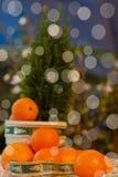 Tangerines στο ντεκόρ Χριστουγέννων με το δέντρο πεύκων Ηλιακή ενέργεια φρούτων του ήλιου, της ευτυχίας συμβόλων, του πλούτου και Στοκ εικόνα με δικαίωμα ελεύθερης χρήσης