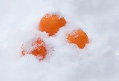 tangerines Χριστούγεννα Στοκ Φωτογραφία