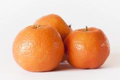 Tangerines в белизне Стоковые Фотографии RF