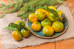 Tangerines в плите и ветви Coniferous Стоковые Изображения
