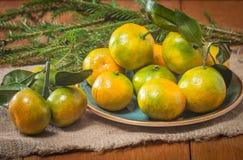 Tangerines в плите и ветви Coniferous Стоковое Фото