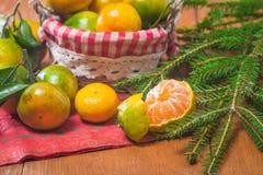 Tangerines в плите и ветви Coniferous Стоковые Изображения RF