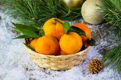 Tangerines в плите на покрытой снег предпосылке Стоковые Фото