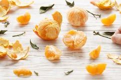 tangerines 1 жизнь все еще Стоковые Фотографии RF