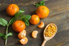 Tangerines и мята стоковое изображение
