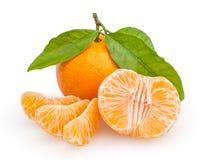 Tangerines на белизне Стоковая Фотография RF