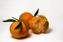Tangerines на белой предпосылке с яркими ыми-зелен листьями Взгляд со стороны, конец вверх Reticulata цитруса стоковое фото rf
