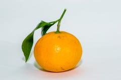 Tangerines на белизне Стоковая Фотография