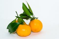 Tangerines на белизне Стоковые Фото