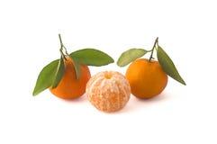 Tangerines на белой предпосылке с путем клиппирования Стоковые Фотографии RF
