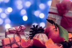 Tangerines праздников с bokeh Стоковое Фото