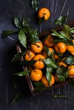 Tangerines с зелеными листьями в деревянной коробке на темной предпосылке Стоковые Изображения RF