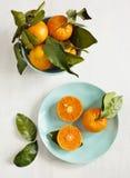 Tangerines с листьями Стоковое Фото