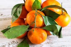 Tangerines с листьями Стоковое Изображение RF