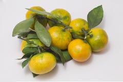 Tangerines с листьями Стоковые Фото