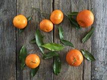 Tangerines с листьями Стоковые Изображения