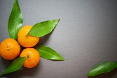 Tangerines с листьями на предпосылке шифера Стоковая Фотография RF