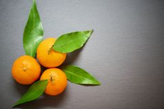 Tangerines с листьями на предпосылке шифера Стоковое фото RF