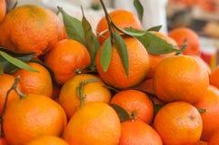 Tangerines с листьями на рынке Стоковая Фотография RF