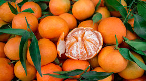 Tangerines для продажи стоковые изображения rf