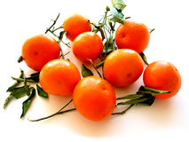 tangerines 1 листь белые Стоковое Изображение RF