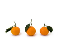 Tangerines. Isolated on white, close-up Stock Images