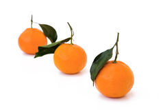 Tangerines. Isolated on white, close-up Royalty Free Stock Photos