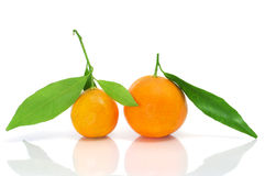 Tangerines. Some tangerines isolated on a white background Royalty Free Stock Photos