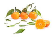 Tangerines Stock Photos