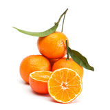 Tangerines. Royalty Free Stock Image