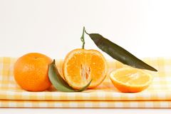 Tangerines Stock Photography