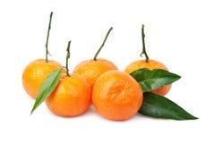 tangerines Imagem de Stock