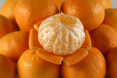 Tangerines. A peeled tangerine on top of unpeeled tangerines Stock Photos
