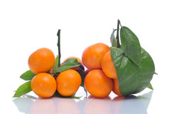 Tangerines. Some bunches of tangerines on a white background stock photos