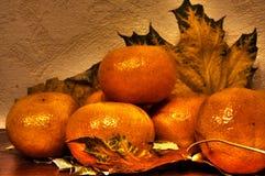 Tangerines Stock Photography