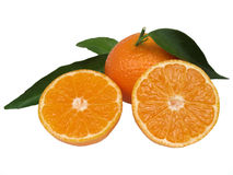 Tangerines. Juicy tangerines arranged on white background Royalty Free Stock Images