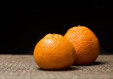 Tangerines royalty free stock image