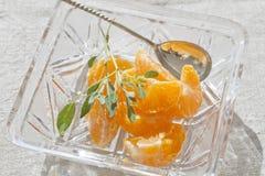 Tangerines Fotografia Stock