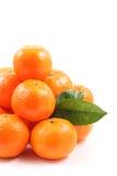 Tangerines Foto de Stock Royalty Free