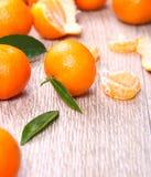tangerines Стоковое фото RF