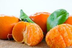 tangerines Obrazy Royalty Free
