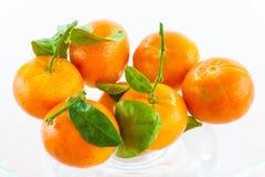 tangerines Стоковая Фотография