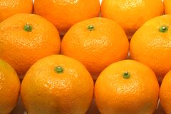 Tangerines. Closeup of fresh juicy tangerines stock photos