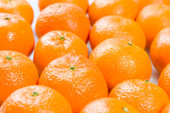 Tangerines. Some tangerines on white ground stock photography